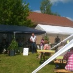 Lindenfest (3)